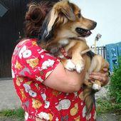 """CHAMACO il cagnolino """"lindo"""""""