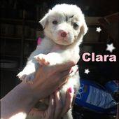la piccola Clara <3